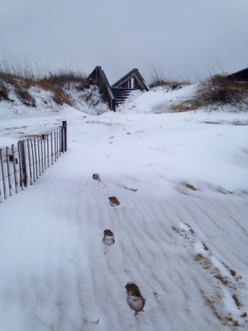 Snowy Sand